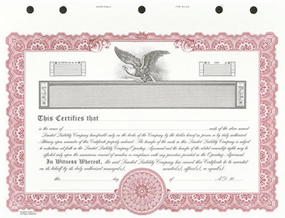 Goes® KG9 Custom Printed LLC Certificate